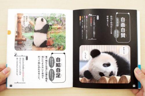 パンダでおぼえる四字熟語